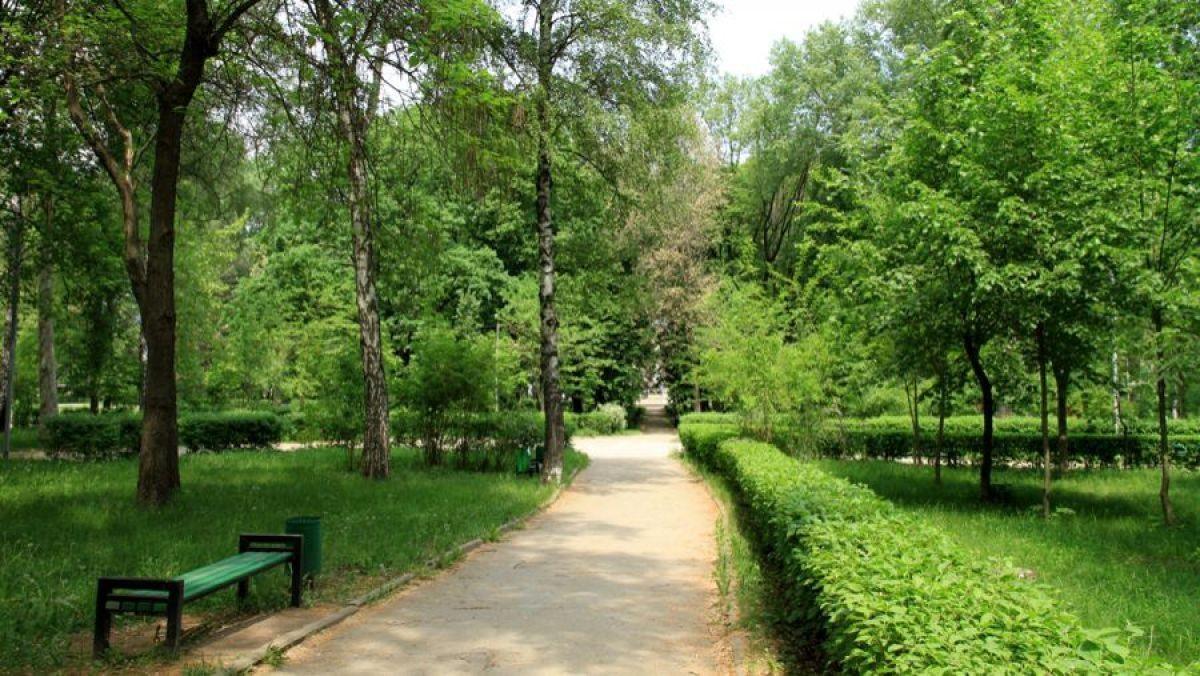 Activitățile economice în spațiile verzi din sate și orașe ar putea fi interzise