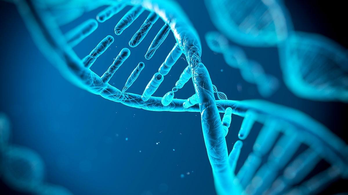 Centrul de Medicină Legală a început prestarea serviciilor de expertiză judiciară genetică