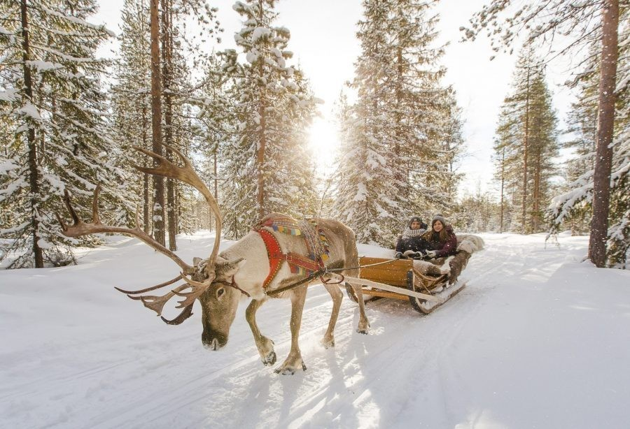 O companie imobiliară și-a trimis clienții în Laponia. Imagini din călătorie
