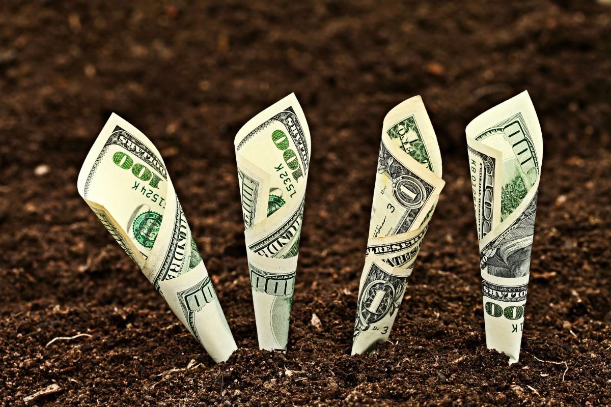 Fondurile de finanțare a tinerilor antreprenori au fost suplinite cu 100 milioane lei în 2020