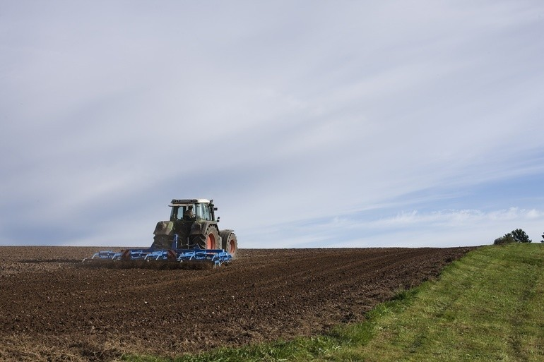 În Moldova sunt circa 23 mii hectare de teren lăsat în pârloagă