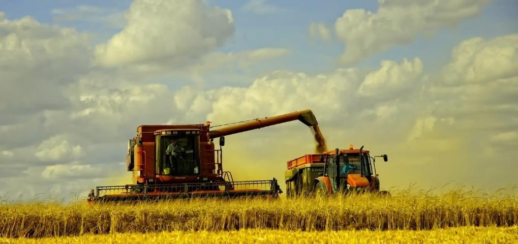 Agricultorii pot depune cerere de solicitare a compensațiilor pentru diminuarea consecințelor calamităților naturale