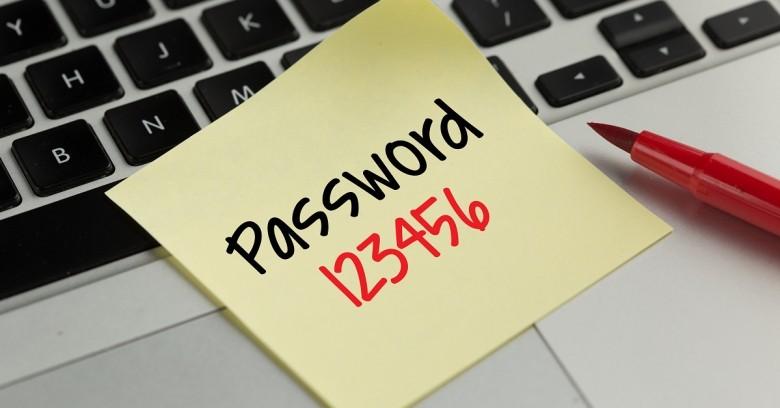 Verificarea în mod electronic a stării contului personal de asigurări sociale. Cum pot fi obținute parolele de acces