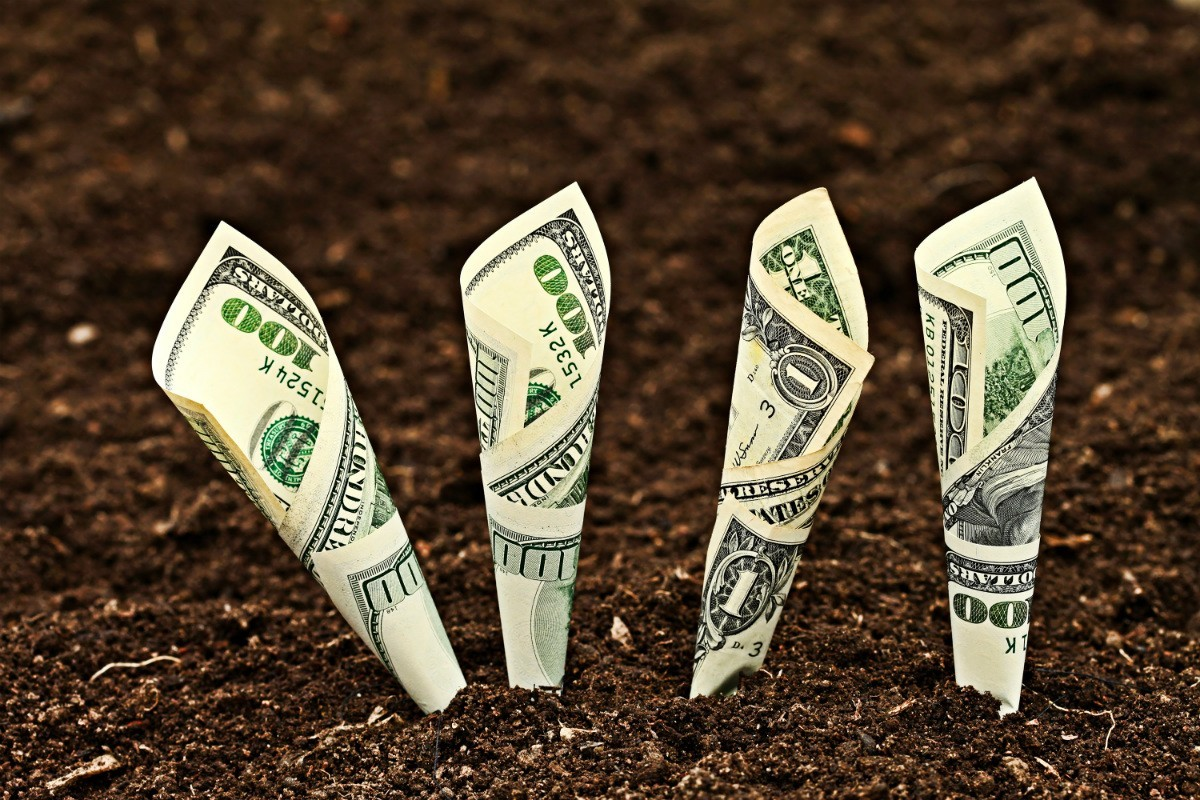 SFS a relansat Programul de subvenționare a dobânzilor la credite și Programul de rambursare a TVA