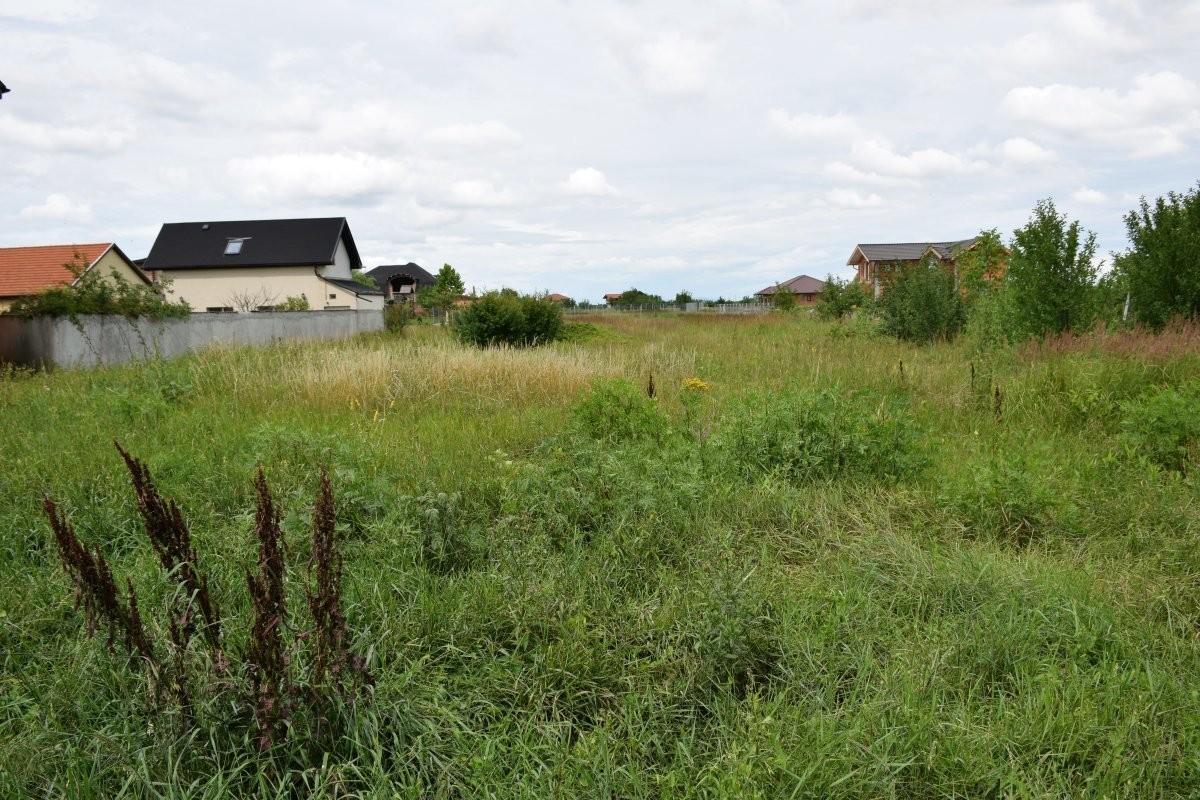 Noi reguli privind valorificarea terenurilor proprietate publică a statului: Proprietarii de bunuri amplasate pe terenuri publice, obligați să încheie contracte cu APP