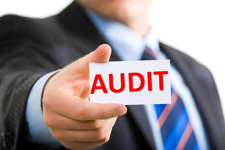 Certificatul de calificare al auditorului, exclus din categoria actelor permisive. Ce modificări a aprobat Guvernul