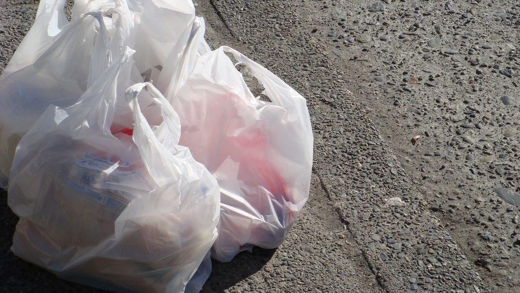 Pungile din plastic vor dispărea începând cu 2019. Parlamentul a votat modificările în lectură finală