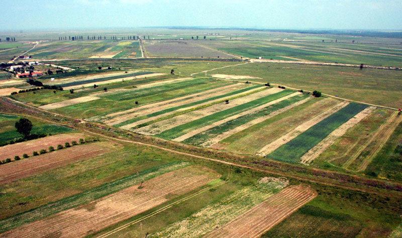 Autoritățile locale vor putea gestiona terenurile celor care nu le prelucrează. Cum vor putea fi consolidate loturile agricole